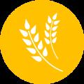 agrucultura